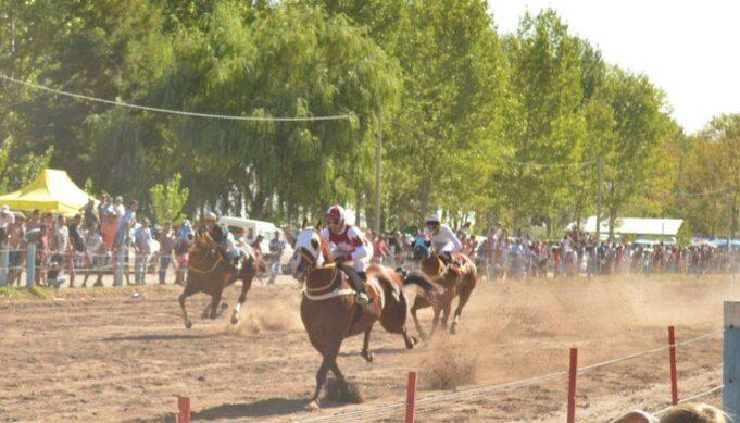 chuky-caballos
