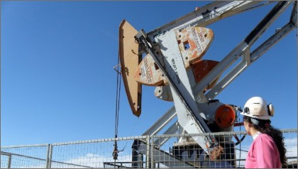 guanaco petrolero