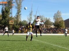 Depo Maracachino3