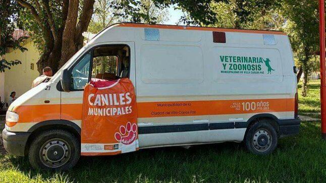 Catriel25Noticias.com perros-carlos-paz3-646x363 ¡Mirá cómo este municipio rescata los perros de la calle! NACIONALES NOTICIAS