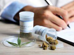 Cannabis Red Solidaria Jpg1