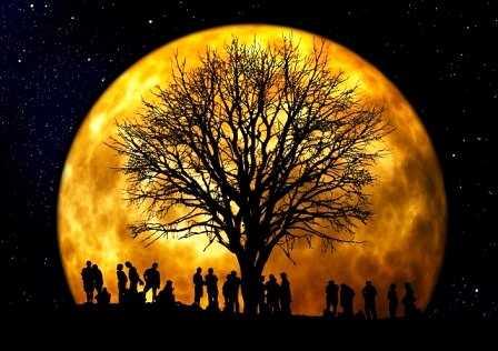 arbol genealogico - Catriel25Noticias.com